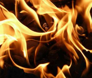 В Воронеже из-за пожара в многоэтажке эвакуировали 5 человек