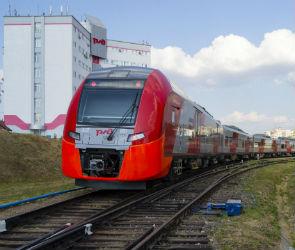 На электропоезде «Ласточка» воронежцы смогут добраться до Москвы за 5 часов