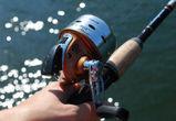 Под Воронежем рыбак избил инспектора рыбнадзора