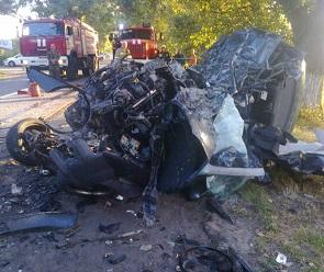 Под Воронежем в ДТП с микроавтобусом погибли 3 человека, 10 пострадали
