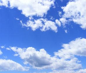 Из-за аномальной жары в Воронежской области объявлено «Штормовое предупреждение»