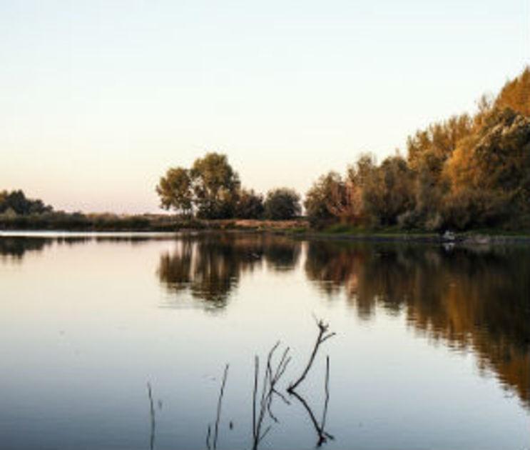 Власти решили сдать в аренду популярный в Воронеже пляж