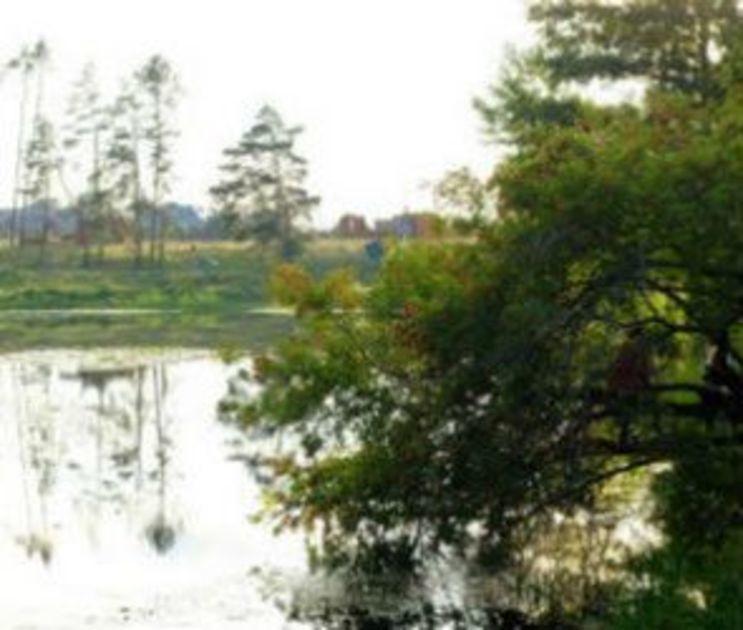 В Воронеже у ж/д моста утонул пьяный мужчина