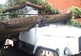 В Воронеже сильный ветер срывал крыши и валил деревья на машины и провода