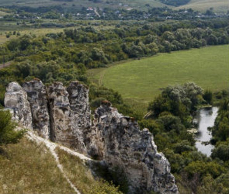 Из Воронежа в Дивногорье на два дня запустят прямую электричку