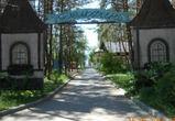 Строительство ледового дворца перенесли в парк «Дельфин»