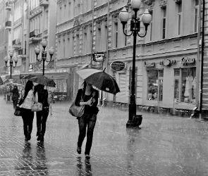 В День города в Воронеже возможен дождь