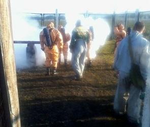 Главный механик «Трансаммиака» признал вину в аварии на аммиакопроводе