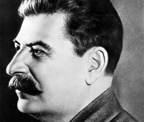 Известный психолог назвал воронежцев, давших ребенку имя Сталин, сумасшедшими