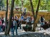 Выставка «Воронеж – сад» 2016 147541
