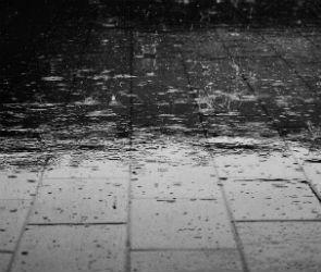 Выходные в Воронеже будут холодными и дождливыми