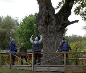 Федеральный телеканал снимет фильм о заповедных местах Воронежской области