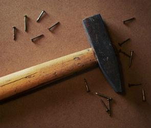 В Воронеже неадекватный пенсионер избил дочь и внучку молотком