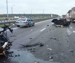 У водителя, разбившегося в страшном ДТП в Рамонском районе, недавно умерла жена