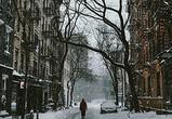 Проблему уборки снега в Воронеже решат запретом ночной парковки на 26 улицах