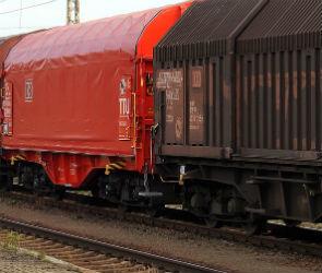 В Воронежской области грузовой поезд насмерть сбил пенсионера