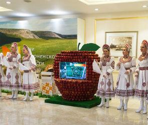 В Совете Федерации РФ прошли Дни Воронежской области
