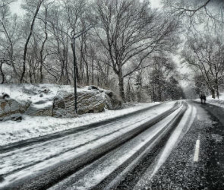 МЧС предупреждает о мокром снеге и дожде в Воронеже и области