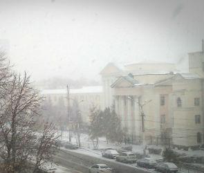 Снег в Воронеже будет идти всю следующую неделю