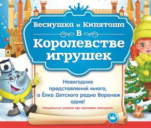 Открыта продажа билетов на ёлку «Детского радио»