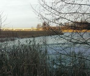 В Воронеже пропавшего рыбака обнаружили мертвым в водохранилище