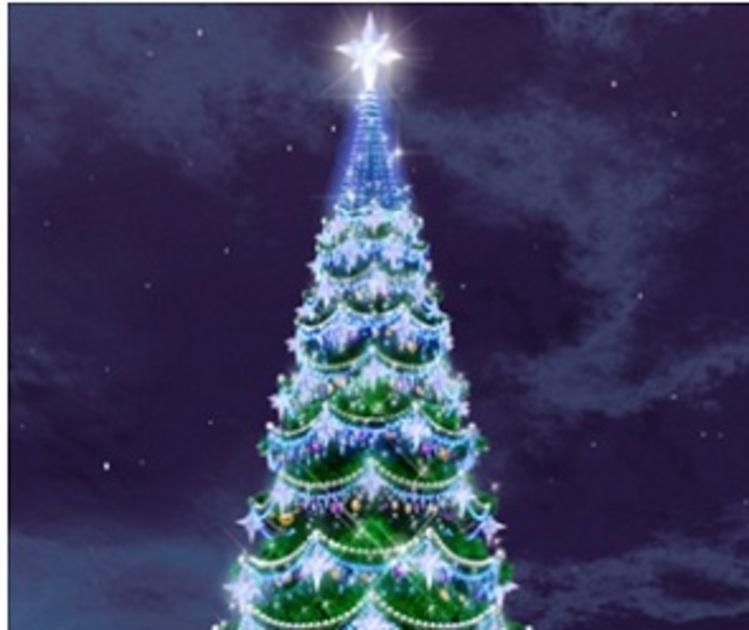 Воронежцев не стали лишать новогодней елки на площади Ленина