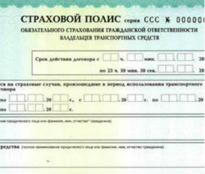 В Воронеже депутаты предложили продлевать полисы ОСАГО при отсутствии бланков