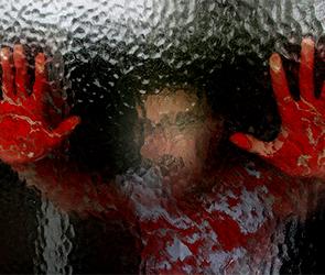 СКР расследует убийство, совершенное 19-летним парнем в воронежском селе