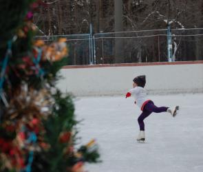 В мэрии рассказали, где в Воронеже можно бесплатно покататься на коньках