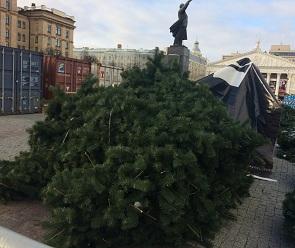 На главной воронежской площади начались работы по установке елки за 7 млн руб