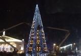 Старую воронежскую елку установят перед Благовещенским собором