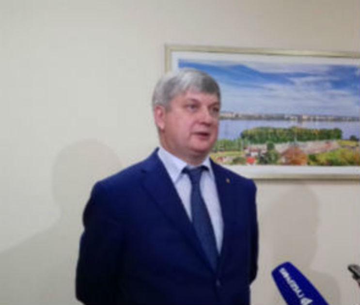 После публичных слушаний горДуме рекомендовали отменить выборы мэра Воронежа