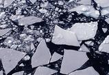 Машина с четырьмя людьми провалилась под лед около левого берега в Воронеже