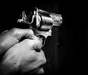 Воронежский полицейский застрелил напавшую на хозяина бешеную овчарку