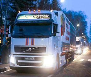 Спасатели Воронежа отправили детям ДНР и ЛНР сотни кило новогодних подарков