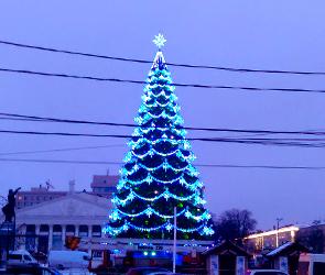 В центре Воронежа из-за Нового года на месяц введут особые меры безопасности
