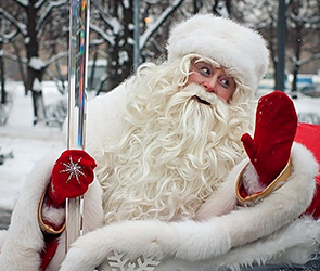 В Воронеже Деды Морозы на параде проедут на собачьих упряжках и паровозиках