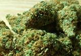 В селе под Воронежем в частном доме обнаружили полтора кило наркотиков
