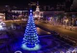 Елка, установленная на площади Ленина, досталась Воронежу бесплатно