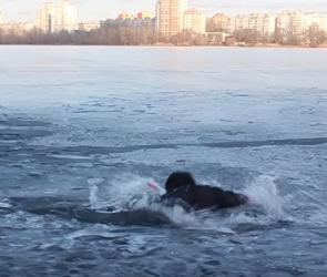Воронежские спасатели сняли на видео спасение человека, провалившегося под лед