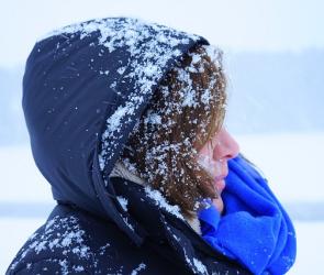Спасатели предупреждают воронежцев о надвигающейся метели и снежных заносах