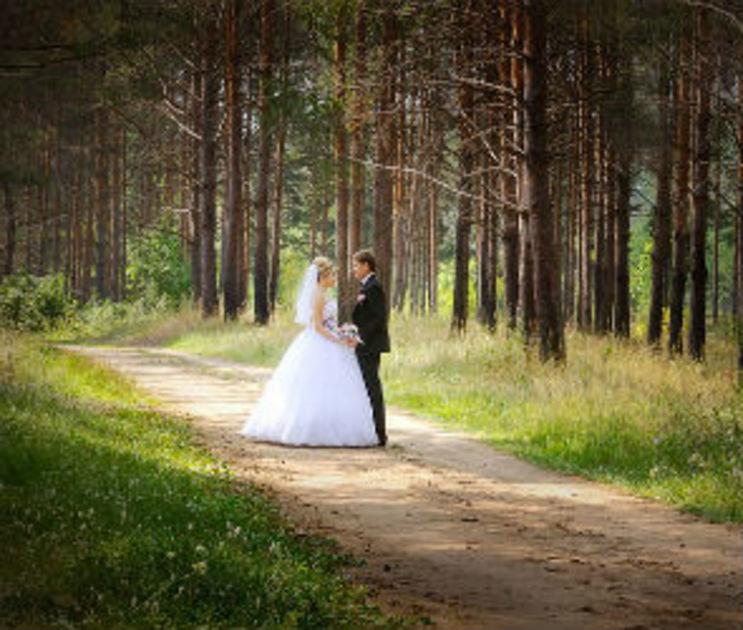 В Воронежской области стали меньше жениться
