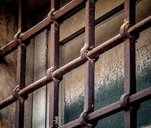 В Воронеже арестован бывший сотрудник автомойки, оказавшийся вором-рецидивистом