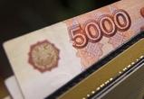 Воронежские полицейские изъяли у двух мужчин фальшивых купюр на 250 тыс рублей