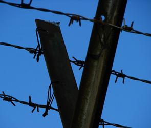 В Воронеже вора вновь посадили в тюрьму за вольную жизнь и неявку в полицию