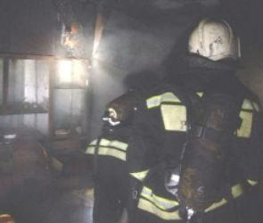В центре Воронежа загорелась квартира в многоэтажном доме, погибла женщина