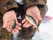 Зимняя рыбалка с CHERY 152740