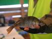 Зимняя рыбалка с CHERY 152814