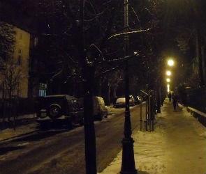 На улице Шишкова на 30-летнюю женщину напал грабитель