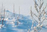 В Воронеже на неделе потеплеет до -3°С
